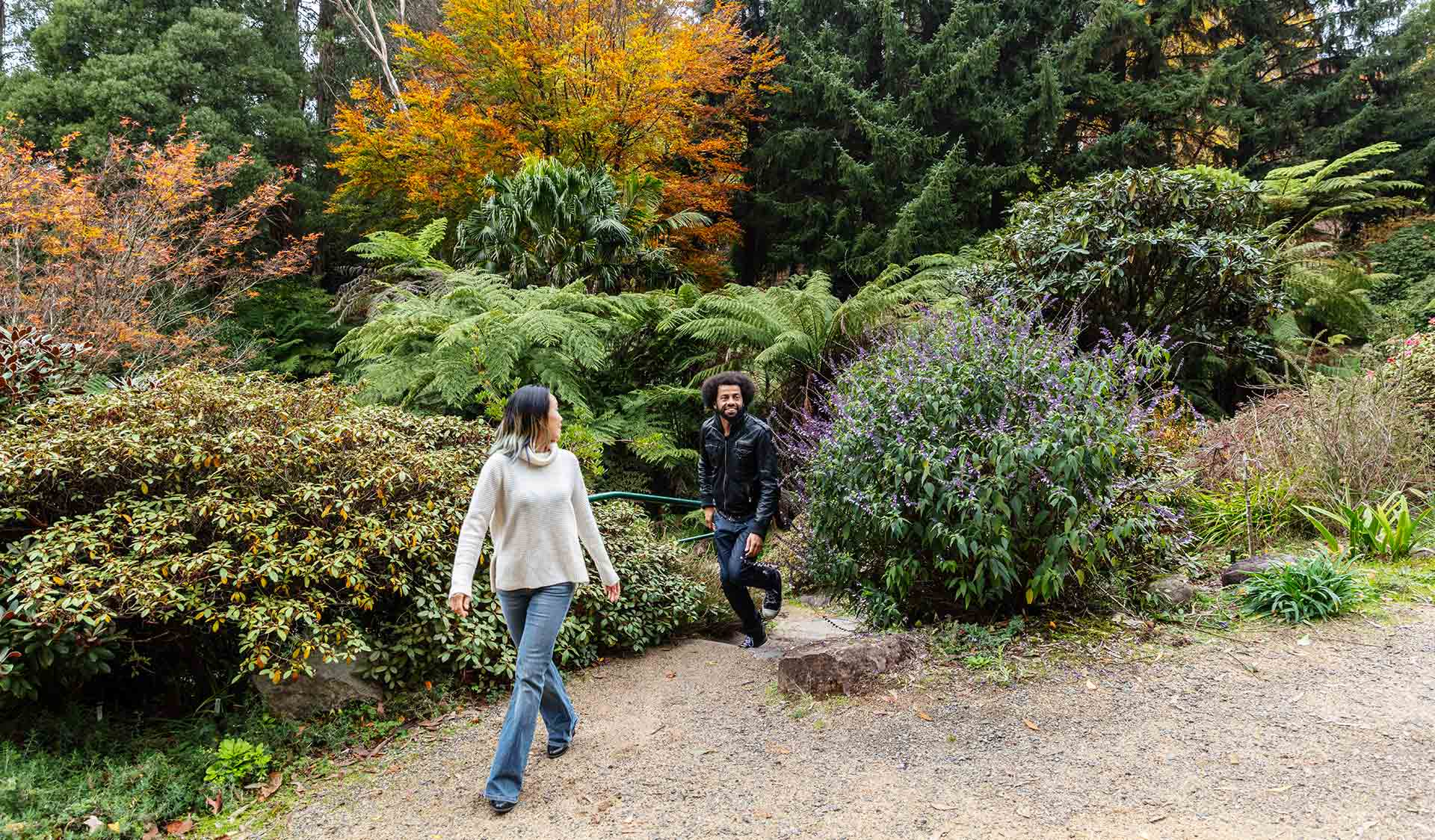 A man with an afro wearing a leather jacket follows a woman wearing a cream knitted jumper up the garden steps and into an opening in the Dandenong Ranges Botanical Gardens.