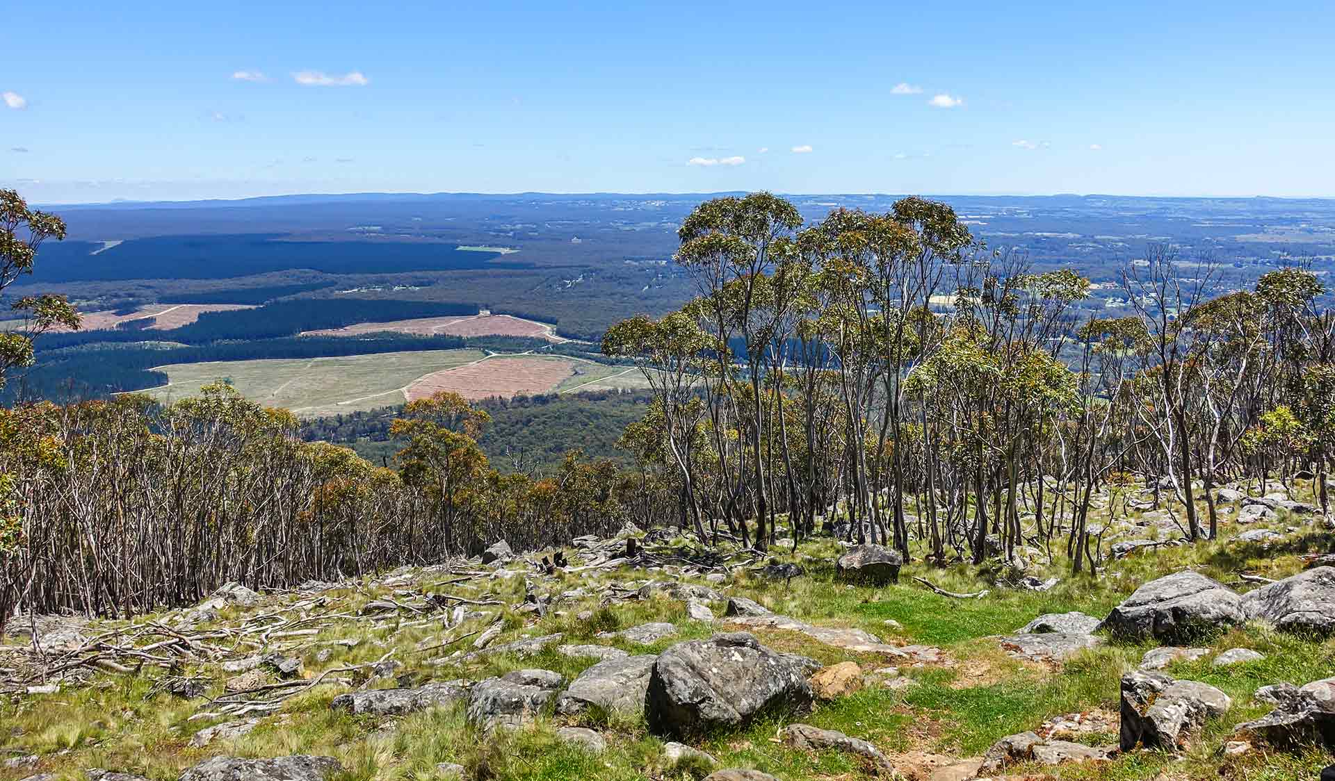 The view of the surrounding flats from near the summit of Mount Macedon