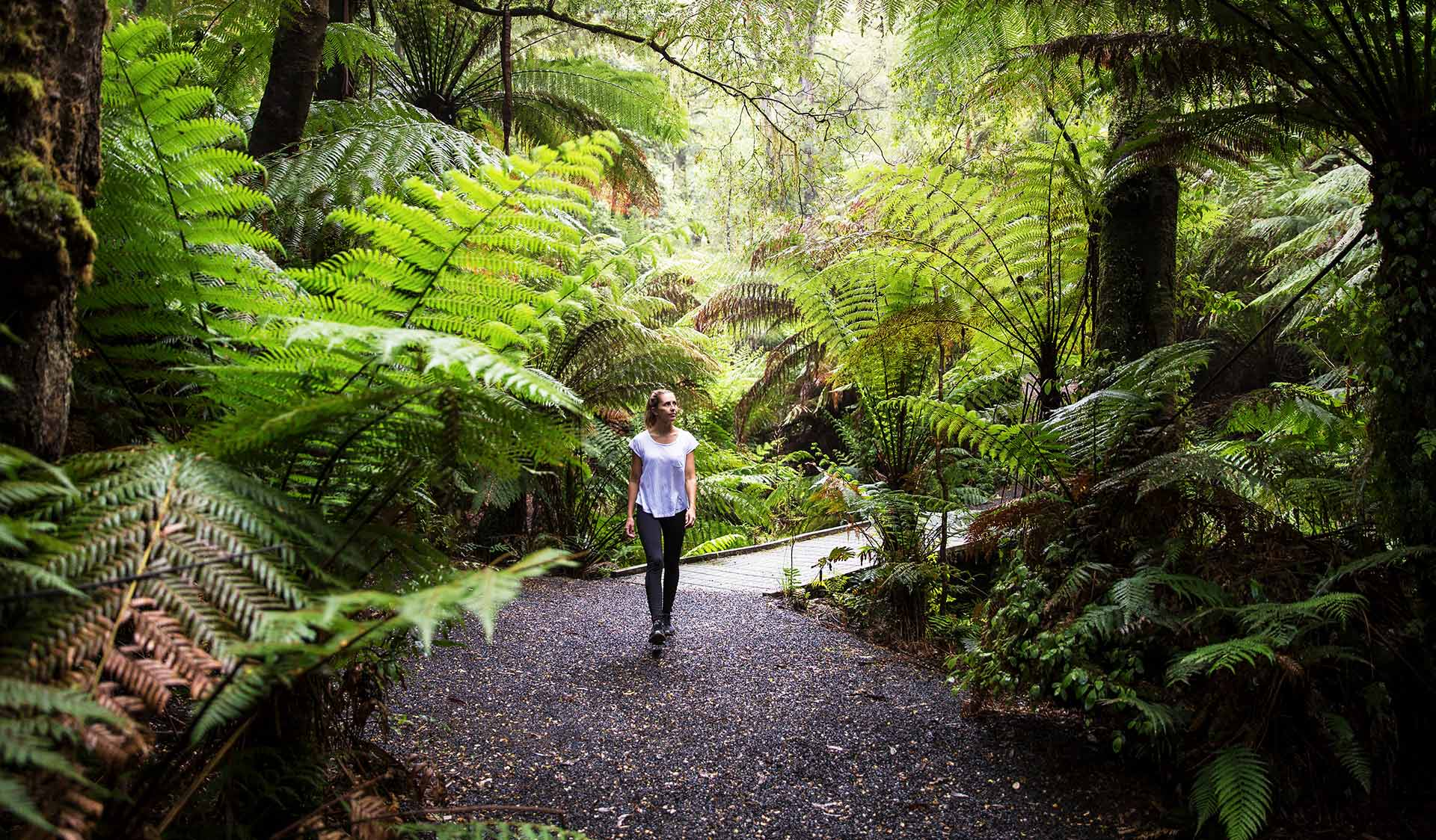 A woman walks through a path at Tarra-Bulga National Park.