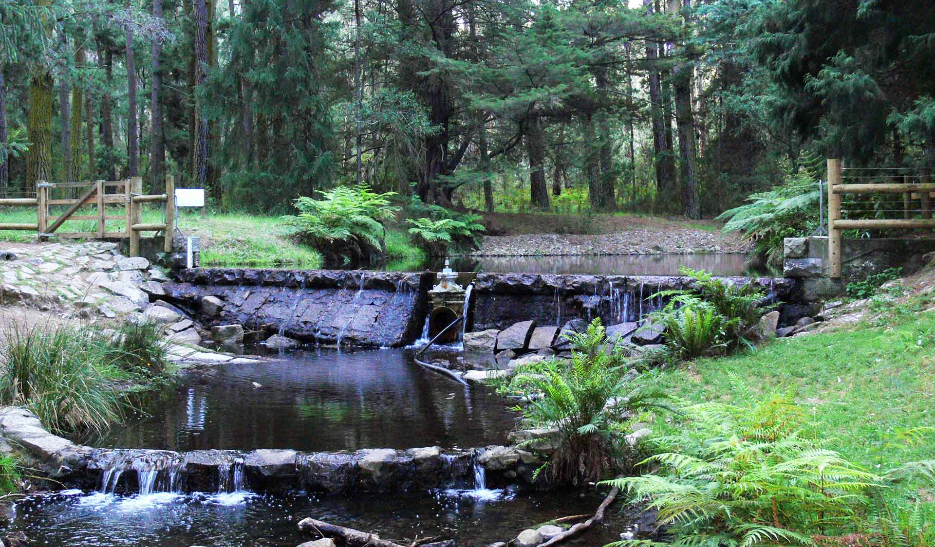 Donellys Weir in the Yarra Ranges National Park.