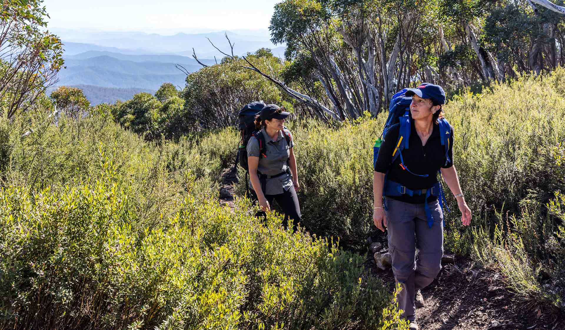 Two women follow the path through scrub up Mt Bogong with mountain views in the distance.