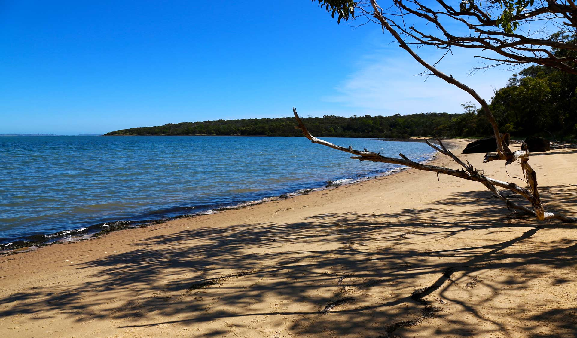 Fairhaven beach at French Island National Park