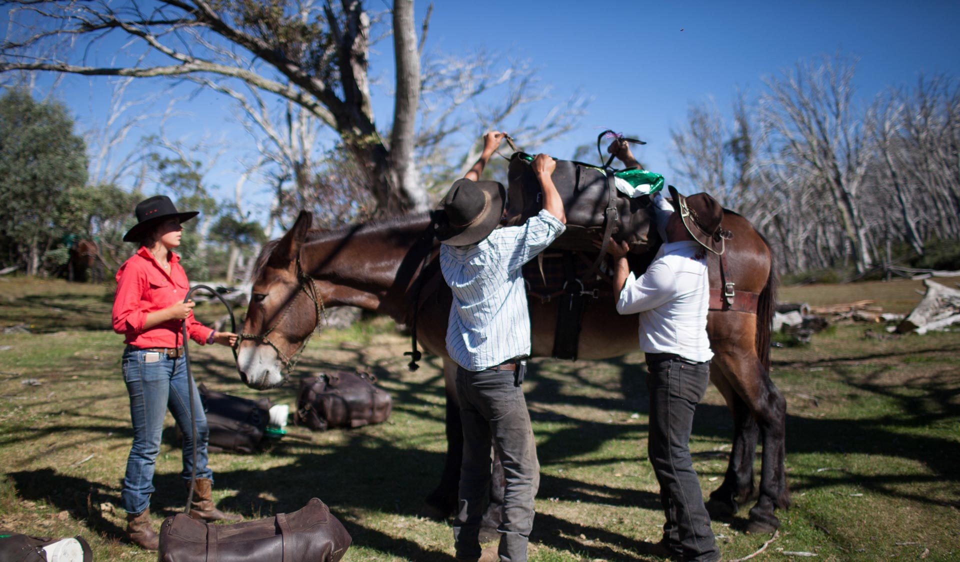 Three horseriders saddle-up a pack horse before the day's riding.