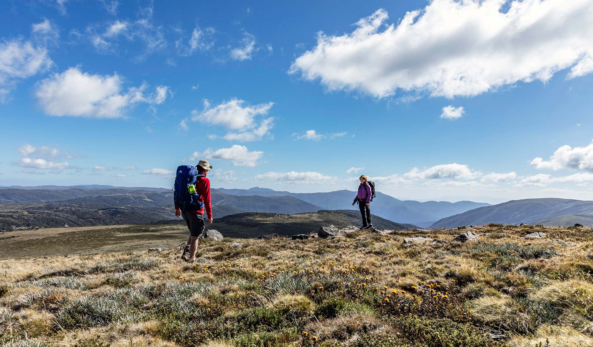 A couple walk along the Bogong High Plains near Mt Nelse.