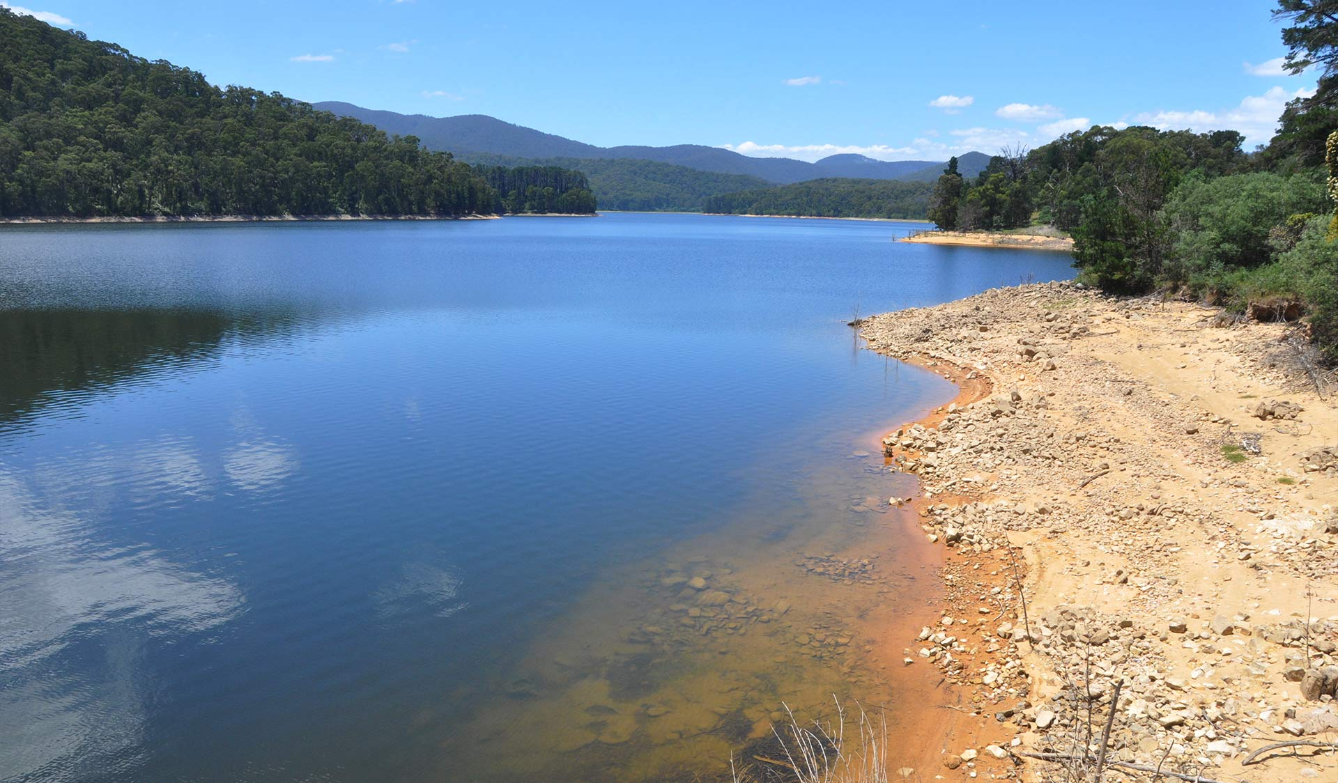 The view from the water's edge at the Maroondah Reservoir.