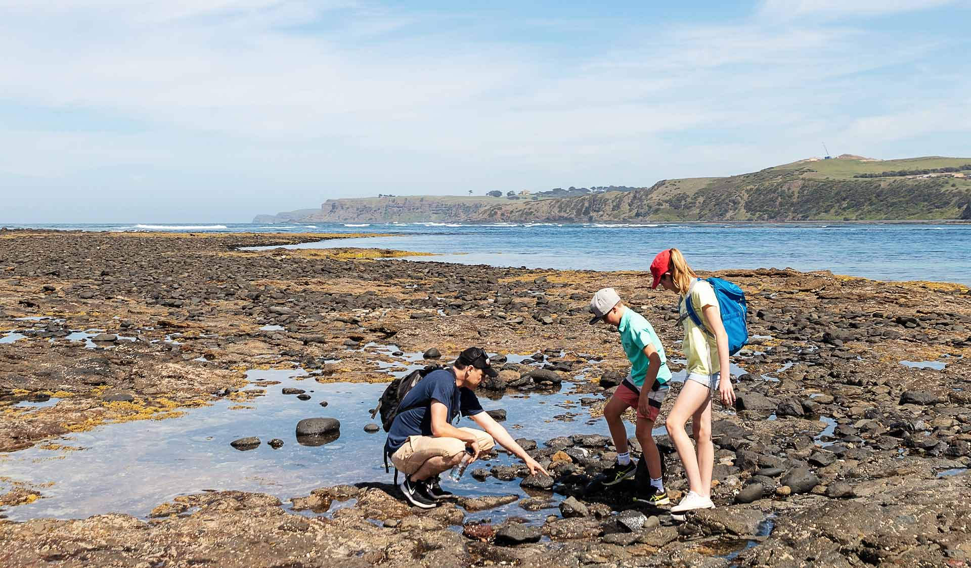 A father goes rockpooling with his two young children at Mushroom Reef.