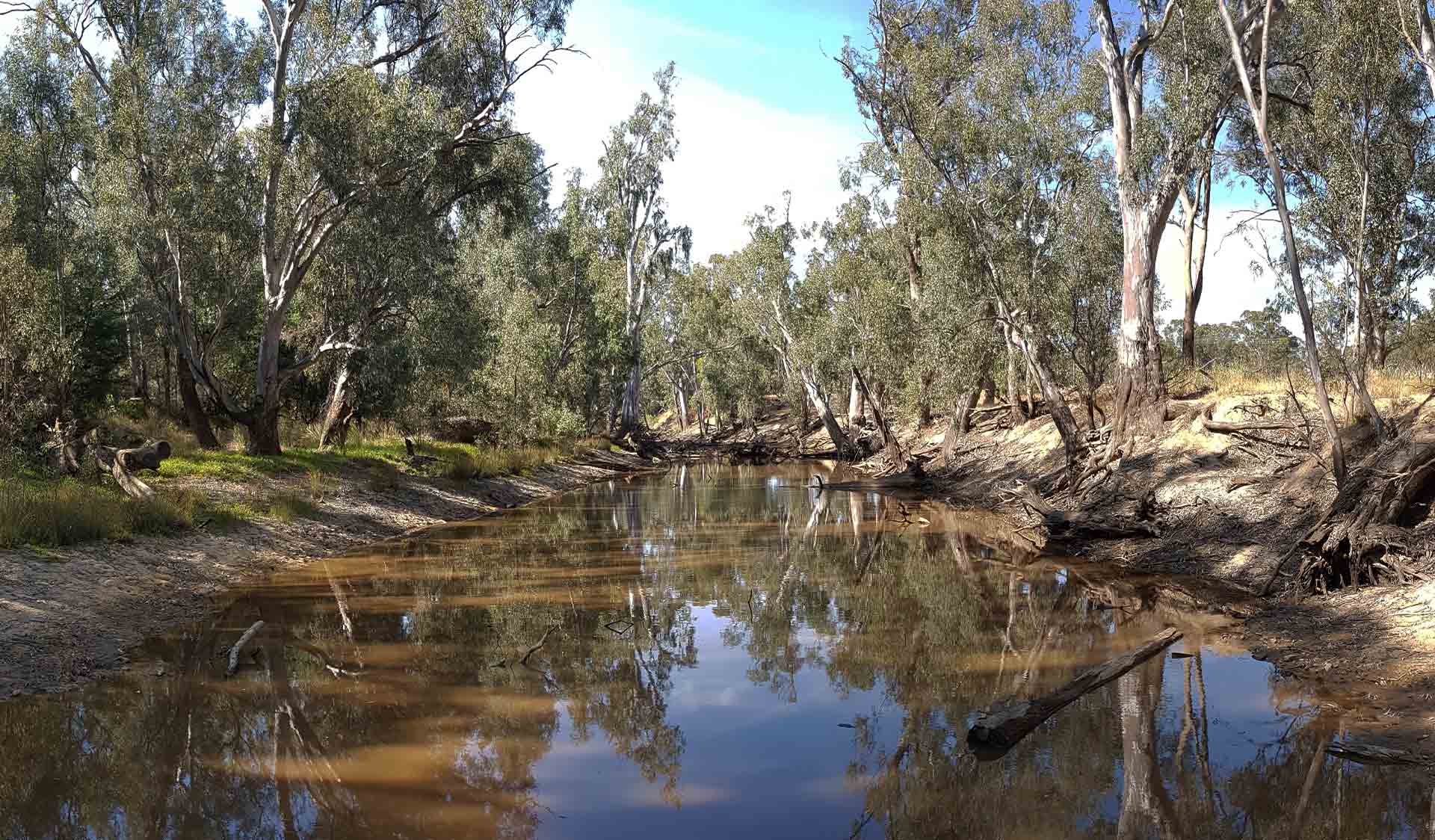 The reflection of the sky in the Ovens River wetlands in the Warby-Ovens National Park